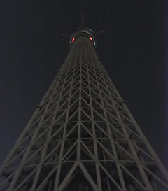 20100923e.jpg