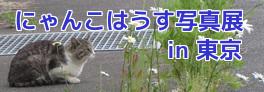 にゃんこはうす写真展in東京